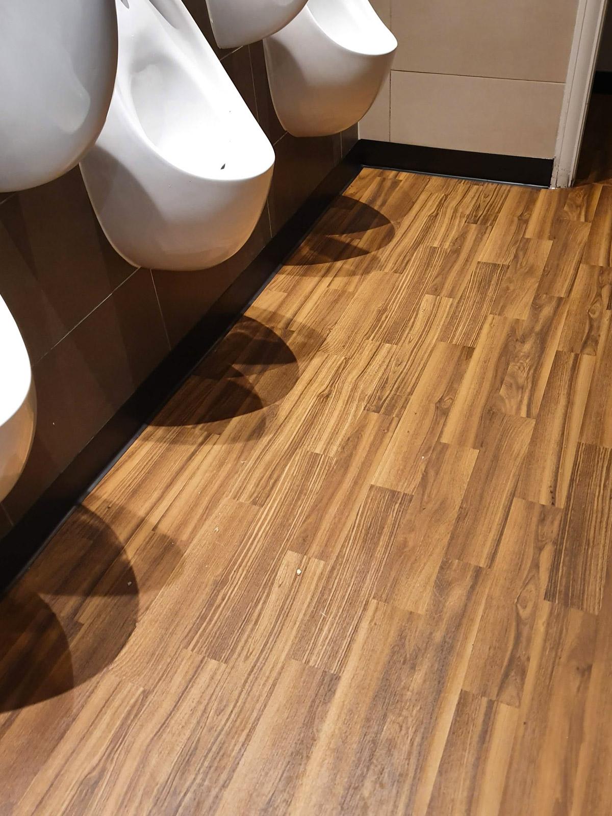 1200x1600-mn-toilet-photo